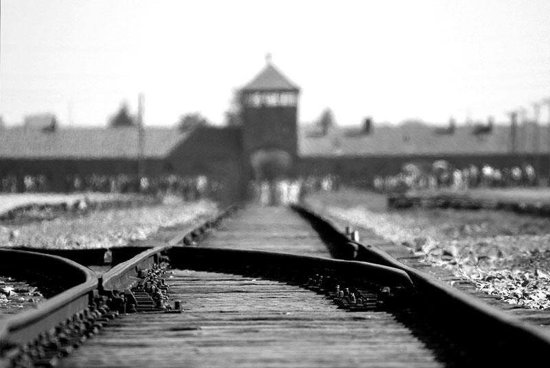 Visitare Auschwitz Birkenau